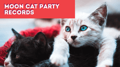 Moon Cat Party Records Youtube Video Thumnail Example